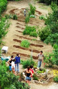Agricoltura Sinergica, Permacultura, Agricoltura Biodinamica